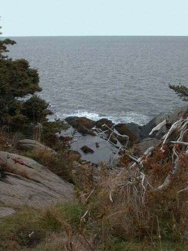 Squeaker Cove?